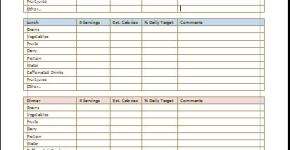 Daily Food Diary Chart Template