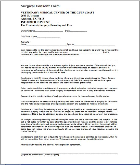 Veterinary Surgery Consent Form