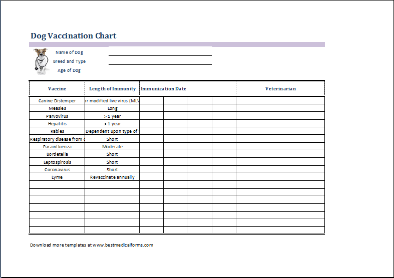 Immunization Record Template 28 Images Printable Immunization