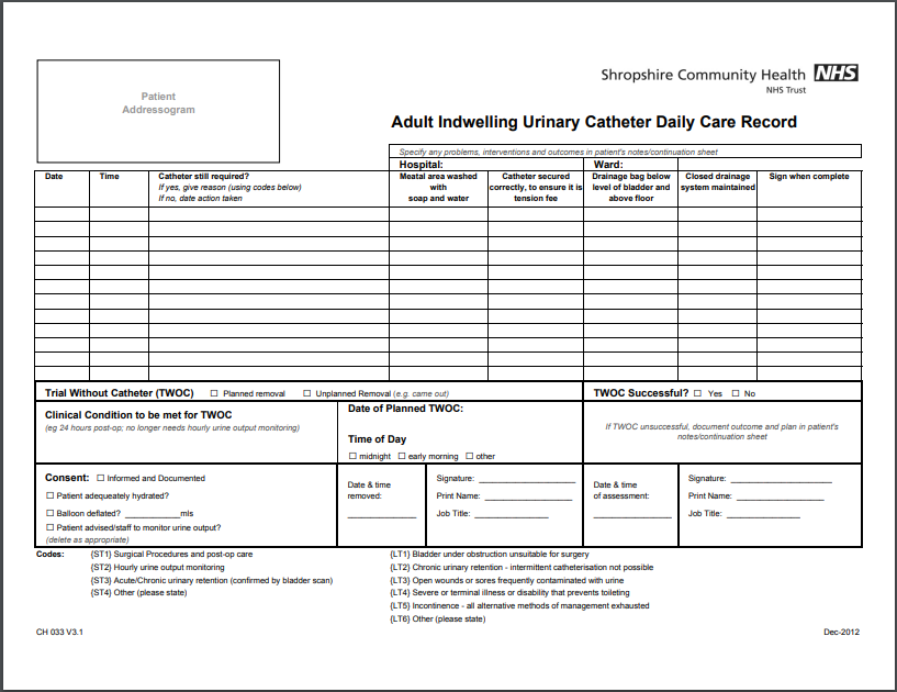 FOLEY CATHETER CARE RECORD Form