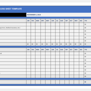 Healthcare profit and loss sheet template