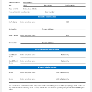 Hospital birth certificate template